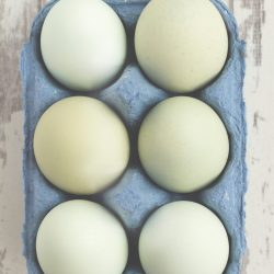 Half dozen chicken eggs in a carton | The Best Vitamin B12 Foods for Vegetarians and Vegans
