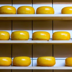 Three shelves with cheese wheels on them | The Best Vitamin B12 Foods for Vegetarians and Vegans